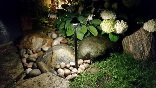 landscape-lighting00022