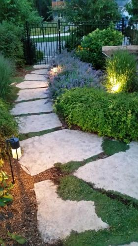 landscape-lighting00036