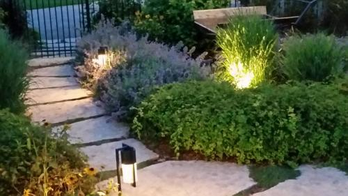 landscape-lighting00046